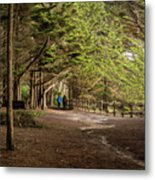 Walk Among The Trees Metal Print