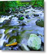 Walk Bridge Over Moffit Creek Metal Print