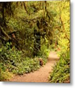Walk Into The Forest Metal Print
