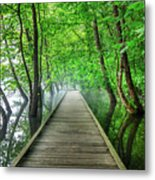 Walk Into The Mist Metal Print