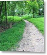 Walk The Path Metal Print