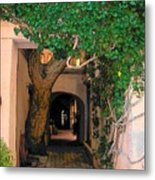 Walk Way Metal Print