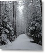 Walk With Frost Metal Print