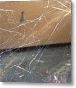 Walkin In A Spider Web Metal Print