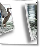 Walking On Water - Gently Cross Your Eyes And Focus On The Middle Image Metal Print