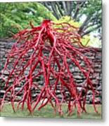 Walking Roots Sculpture 2 Metal Print