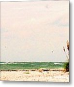 Walking The Beach Metal Print
