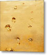 Walking The Dog Metal Print by Mal Bray