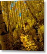 Walking With Autumn Metal Print