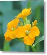 Wallflower Orange Metal Print