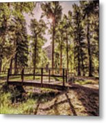 Wallowa Lake Foot Bridge Metal Print