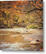 Walnut Creek In Autumn Metal Print