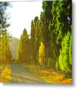 Wanaka Morning Light Metal Print