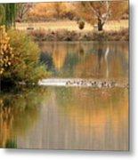 Warm Autumn River Metal Print