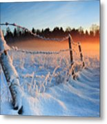 Warm Cold Winter Sunset Metal Print