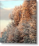 Warm Light Snow Metal Print