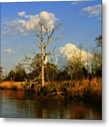 Warm Weather Clouds Metal Print