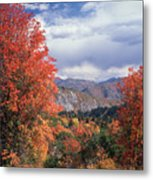 212m45-wasatch Mountains In Autumn  Metal Print