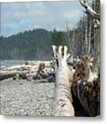Washington Beach Metal Print