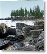 Washington Island Shore 3 Metal Print