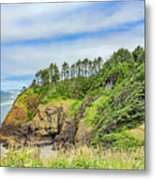 Washington State Coastline Metal Print