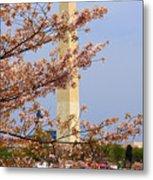 Washinton Monument In Spring Metal Print