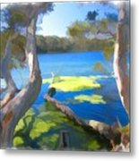 Wat-0002 Avoca Estuary Metal Print