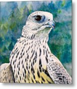 Watchful Eye Metal Print