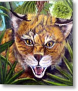 Watching  Florida Bobcat Metal Print