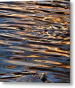 Water Abstract 4 Metal Print