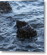 Water And A Rock Metal Print