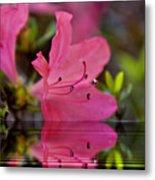 Water Azalea Metal Print