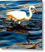 Water Bird Series 34 Metal Print