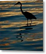 Water Bird Series 7 Metal Print