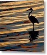 Water Birds Series 3 Metal Print