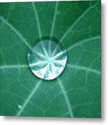 Water Crystal Metal Print
