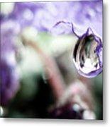 Water Drop On Purple Flower Metal Print