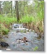 Water Flows After A May Rain Metal Print