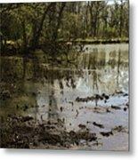Water Garden Lake View Metal Print