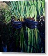 Water Garden Serie-H Metal Print