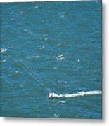 Water Glider Metal Print