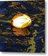 Water Lilly Bud  Metal Print