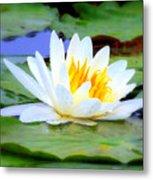 Water Lily - Digital Painting Metal Print