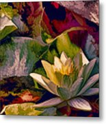Water Lily In Living Color Metal Print