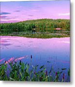 Water Loom Pond Metal Print