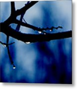 Water On Branch Metal Print