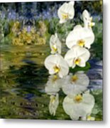 Water Orchid Metal Print
