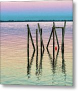 Water Reflections 2017 Metal Print