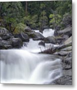 Water Running From The Woods Metal Print