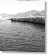 Water Scene In B And W Metal Print